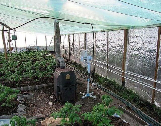 Правильно спланированная и грамотно выбранная система для обогрева теплицы незаменима не только в больших фермерских хозяйствах, но и в условиях частого приусадебного хозяйства