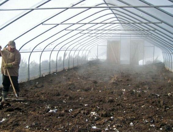 В качестве профилактики опытные дачники советуют ежегодно проводить дезинфекцию почвы при помощи обычной гашеной извести. Просто разбросайте ее по парнику и хорошенько перекопайте землю