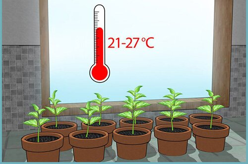 При какой температуре нужно закрывать