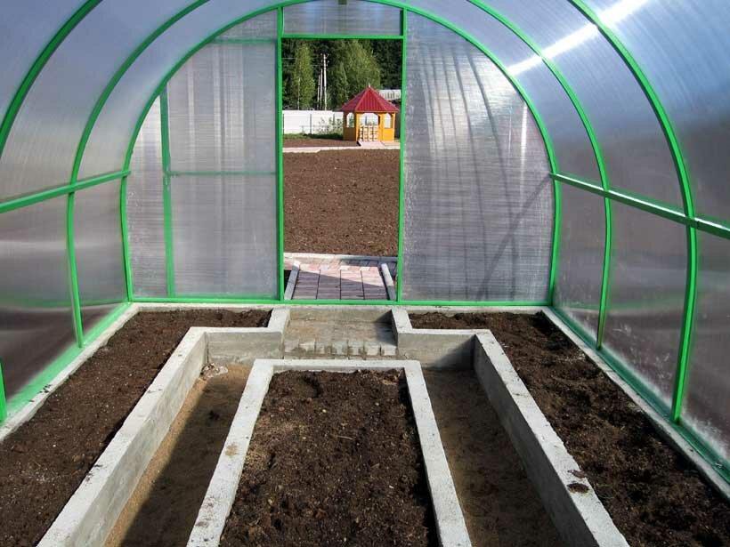 Для того чтобы растения росли хорошо, им нужно обеспечить регулярный полив и постоянную температуру грунта и воздуха