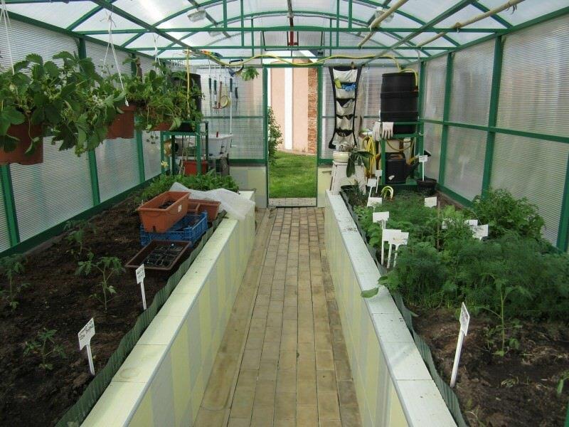Если правильно построить теплицу и продумать в ней все до мельчайших деталей, тогда вы сможете выращивать любые растения и получать качественный урожай даже зимой