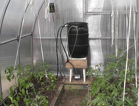Автополив в теплице существенно упрощает процесс выращивания растительных культур
