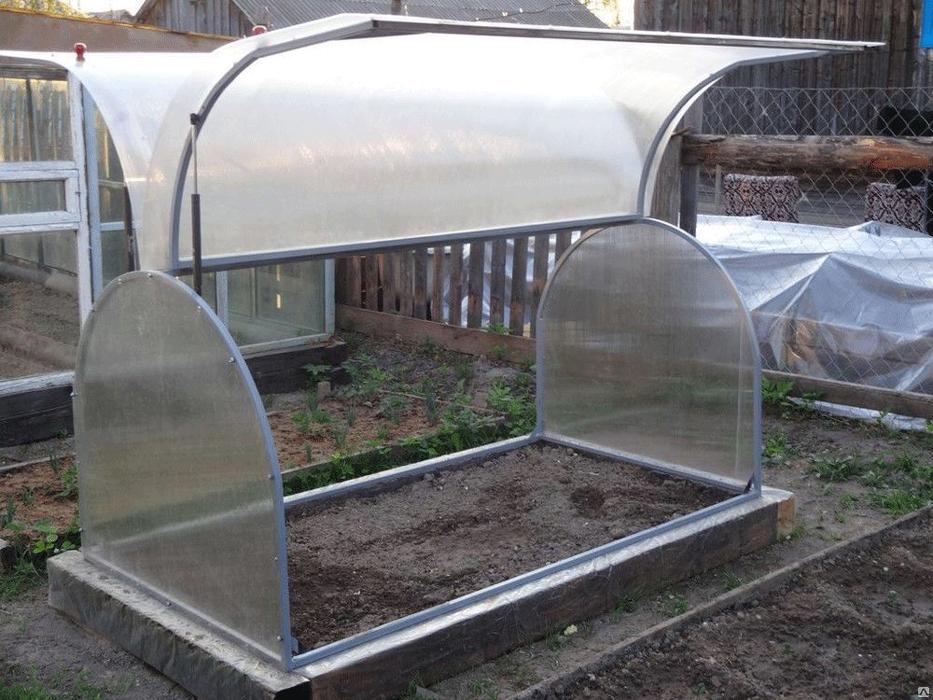 При строительстве теплицы следует учитывать рост растений